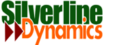 Business Intelligence Consulting Services for Silver Dynamics