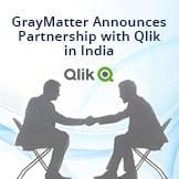 Qlik Partnership