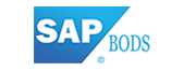 sap bw services